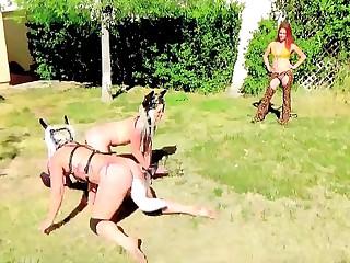 Horse and Doggy Jockey