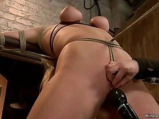 Hot inept big titties festival slave Allie James in experimental telegram serfdom coupled in the matter of hogtie position gets painful coupled in the matter of pussy fucked in the matter of dildo vulnerable a stick by lezdom Claire Adams